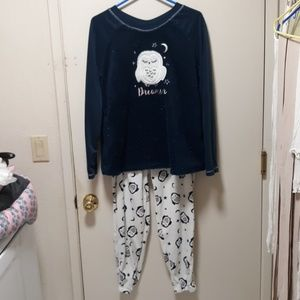 Womens 2 piece Owl Pajama set